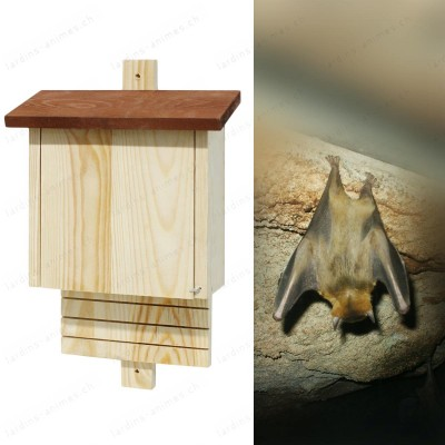 Fledermaus Haus