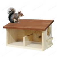 Buffet Mangeoire double pour écureuils