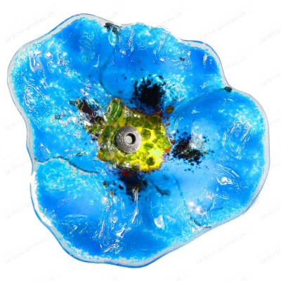 Fleur coquelicot BLEU CIEL